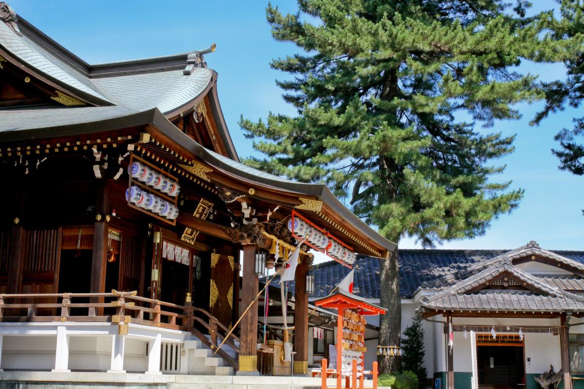 沼袋 氷川神社 結婚式 写真3