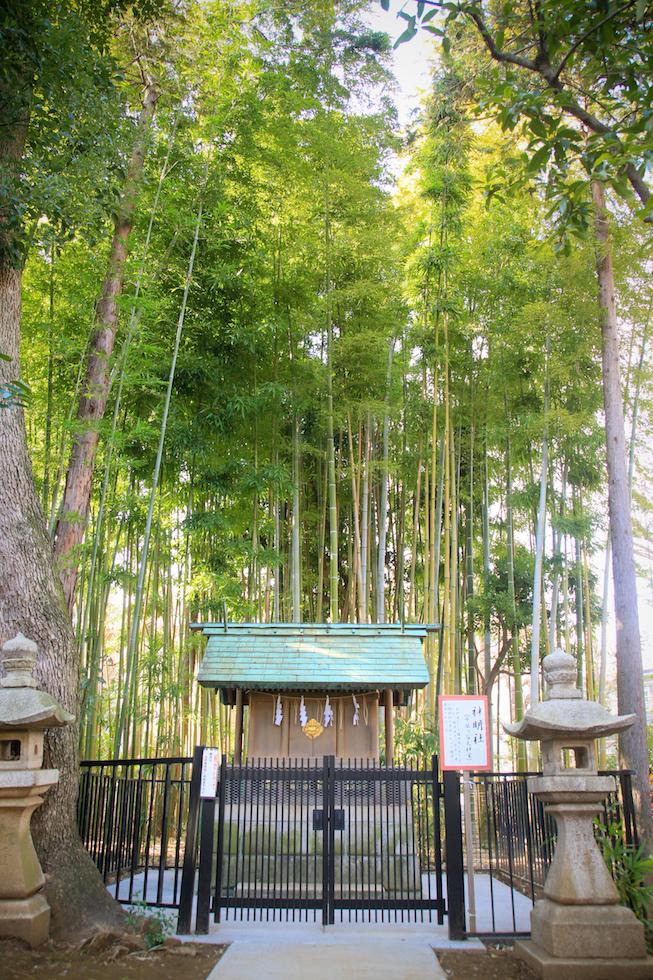 鳩森八幡神社 結婚式 写真6